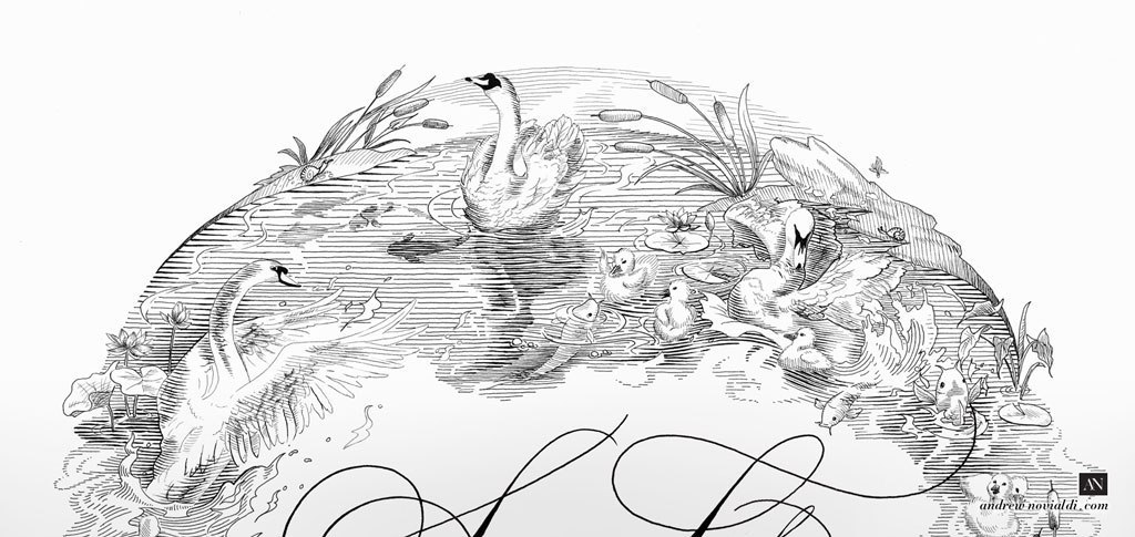 Swan Lake With Cygnes and Koi Fish Illustration Engraving Pen and Ink Handdrawn